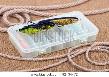 Bait For Catching Predatory Fish