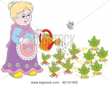 Granny watering vegetables