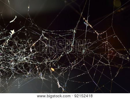 Abstract Spiderweb
