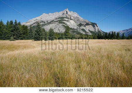 Mount Cascade In Banff National Park