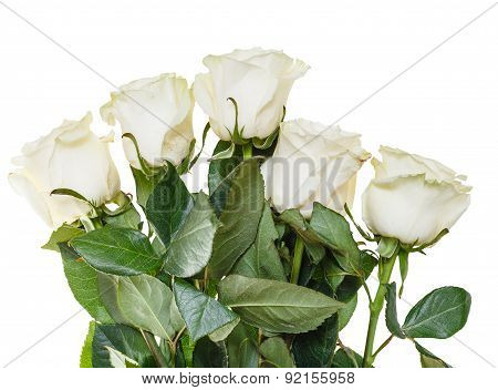 Side View Of Bouquet Of White Roses Isolated
