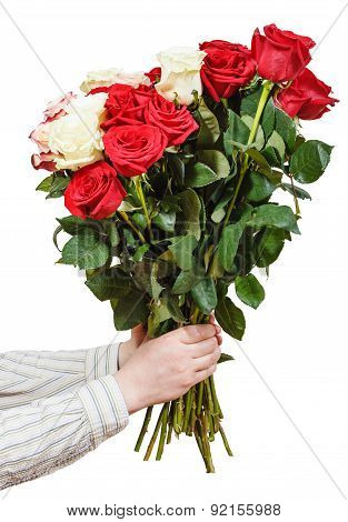 Two Hands Giving Bunch Of Various Roses Isolated