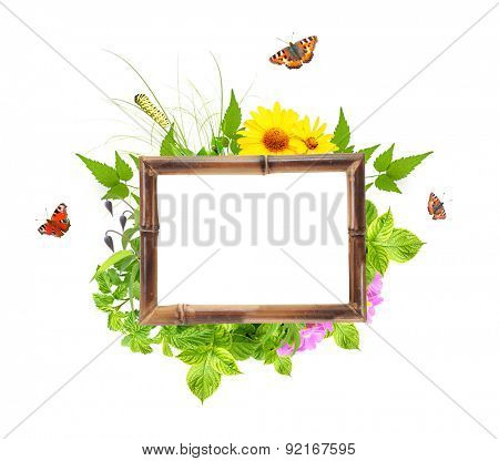 Message of nature. Bamboo frame with summer flowers, green leaves and insect. Isolated on white background