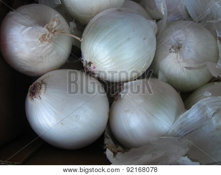 pearl white onions with some peel