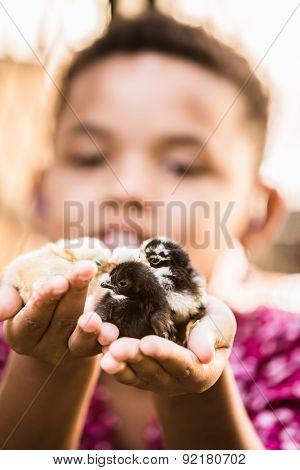 Girl Holding Pet Chicks