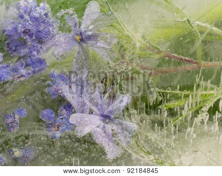 Abstraction Of Wildflowers