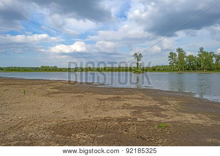 Muddy shore of a lake in spring
