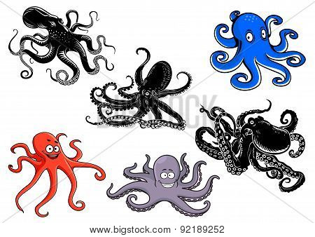 Colorful and black cartoon octopus characters