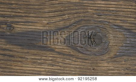 Detail Of Wood Knothole