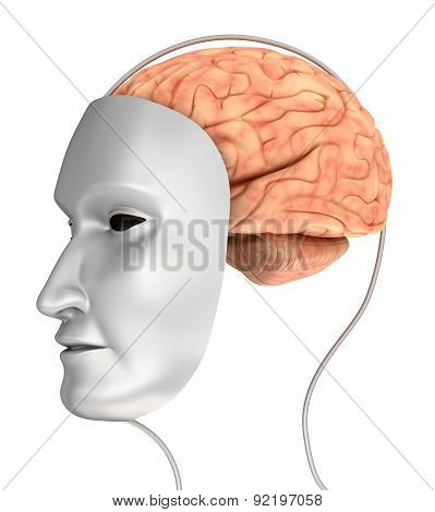 Concept Of Robot And Brain Isolated On White
