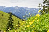 stock photo of bavaria  - Landscape on the mountain Breitenstein in the Alps in Bavaria Germany - JPG