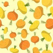 pic of turnips  - Background of yellow turnips - JPG