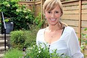 picture of fifties  - Smiling fifty year old lady gardener outside in the garden holding a pack of lobelia - JPG