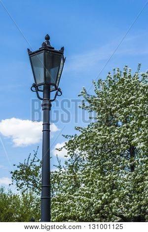 Old lantern on the background of the spring sky and blooming Apple trees in a Moscow Park Kolomenskoe. Russia.