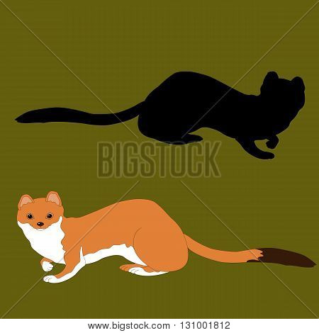 ermine summer face realistic silhouette black background green