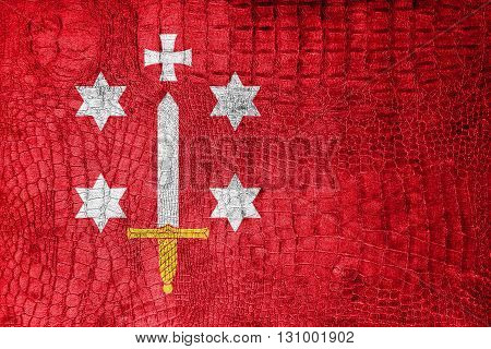 Flag Of Haarlem, On A Luxurious, Fashionable Canvas