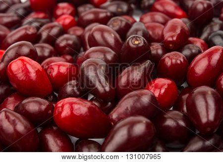 nature organic, red Fresh Cornelian cherries background