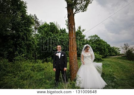 Young Fashion Wedding Couple Standing On Opposite Sides Near The Tree. Tilt Shift Photo