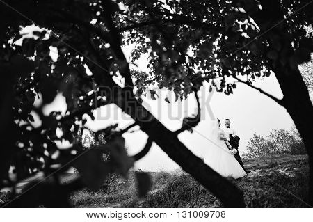 Newlyweds Background Branches Of Trees, B&w Photo