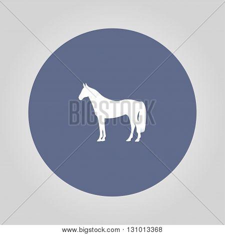 Horse Icon. Modern design flat style EPS