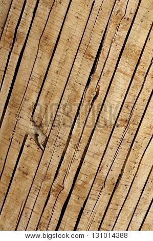 Old ceiling boards structure historical building techniques.