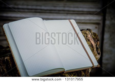 Net Notepad On Wooden Background Writing In A Notebook