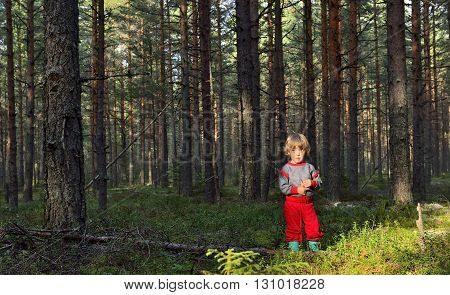 Little Girl In Red Dress Is Standing In Pine Forest At Summer