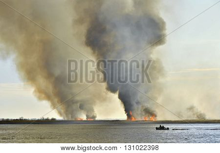 Smoke cloud from the large fire. Burning reed near the lake