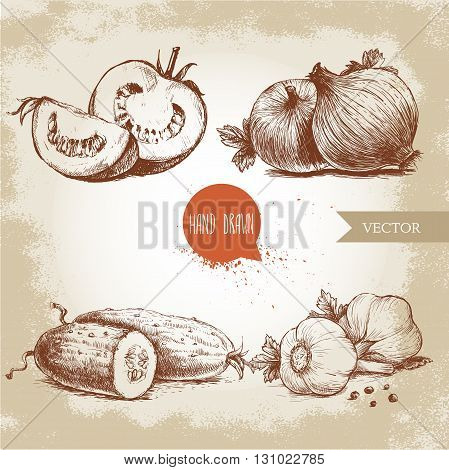 Set of hand drawn vegetables. Sliced tomatoes onion cucumber and garlic. Sketch style ecological food illustration.
