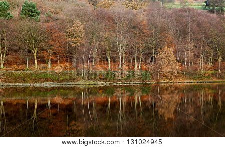 The Lake District also known as The Lakes or Lake land is a mountainous region in North West England.
