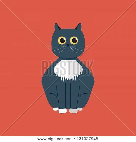 Grey fluffy cat flat character vector design