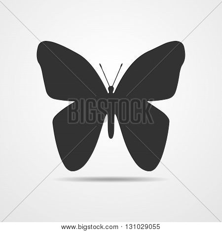 Black silhouette of butterflies on a white background. Butterflies icon - vector illustration.