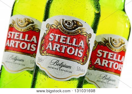 Three Bottles Of Stella Artois Beer Isolated On White