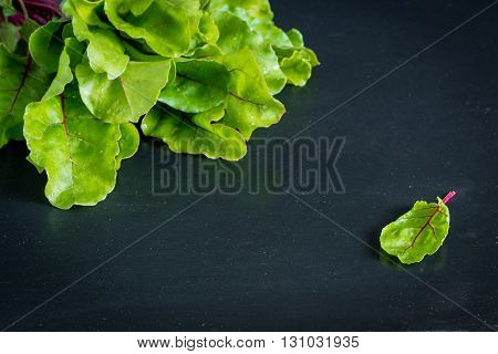 Fresh beet roots leaves on black background.