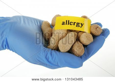 Allergic food concept. Hand in glove holding peanuts isolated on white