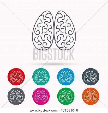 Neurology icon. Human brain sign. Linear icons in circles on white background.