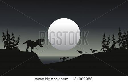 tyranosaurus reptile illustration silhouette at the night