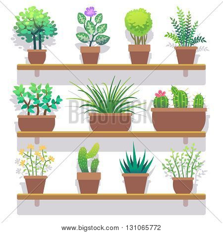 Indoor plants in pots flat icons set. Interior plant in pot and nature plant for home gardening. Vector illustration