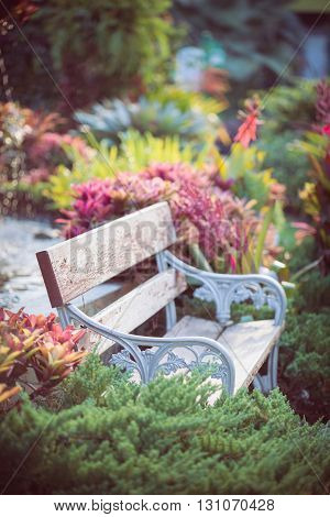 old vintage bench in flowers garden, beautiful garden