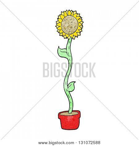 freehand textured cartoon sunflower