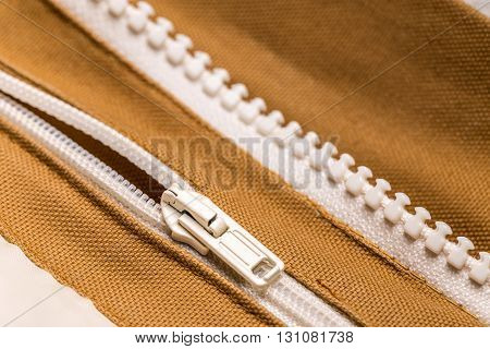 Coat With Zipper
