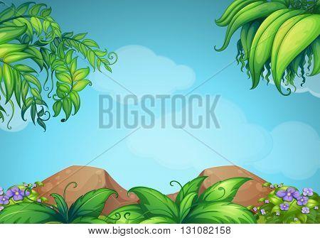Scene with rocks and vine illustration