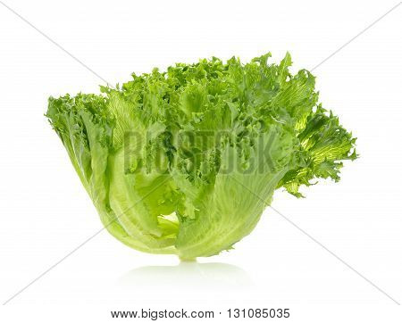 green frillies iceberg lettuce on white background