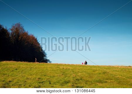 Tourist Familly Is Slowly Walking Up To Hill Into Beach Forest. Autumn Landscape. Meadow At Horizon