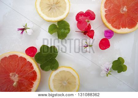 Summer Mood. Flowers And Fruit With Ice..
