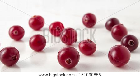 Red cranberries close-up shot with small depth of field
