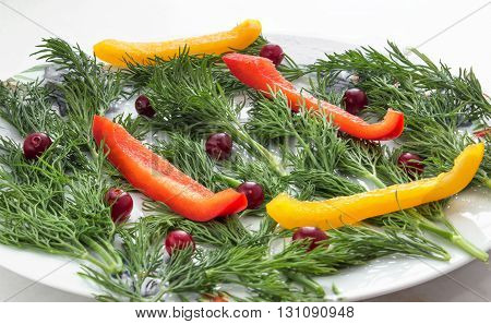 Dill with chopped bell peppers into strips, decorated with cranberries on a plate