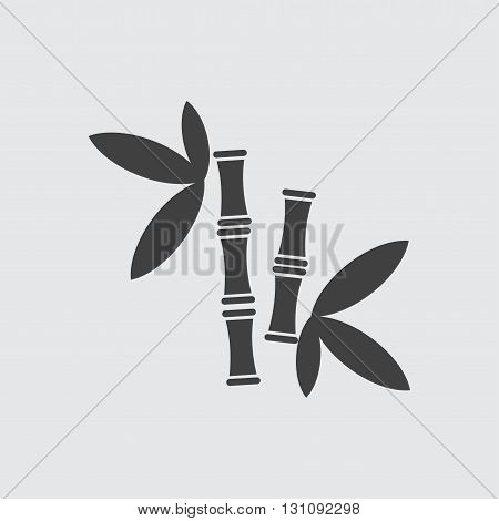 Bamboo icon illustration isolated vector sign symbol
