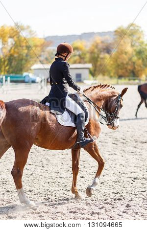 Young Teenage Girl Riding Horse. Equestrian Sport