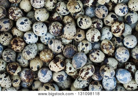 Quail eggs in the market. (Selective focus)